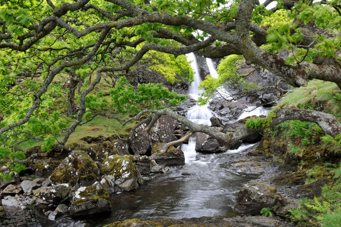 Eas Fors Waterfall, Isle of Mull