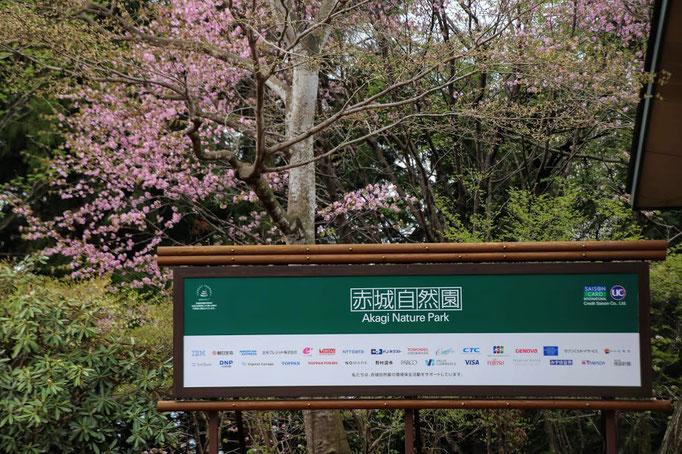 赤城自然園入り口
