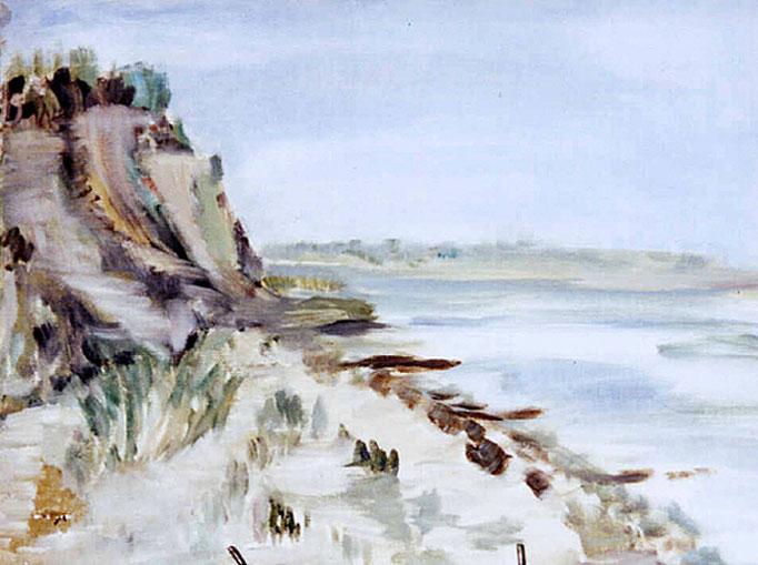 2004  Steilküste 36x48 Öl