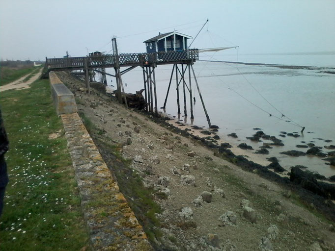 Marée du siècle au phare richard