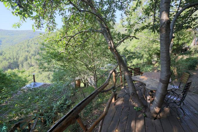 La terrasse de la cuisine feuille