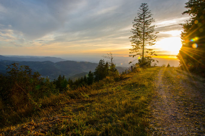 Sonnenuntergang Schwarzwald  / Daniel Keller Fotografie