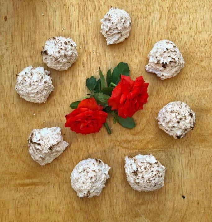 Sultanas de coco. No contiene gluten. Bandeja de 12 unidades, 3´80€