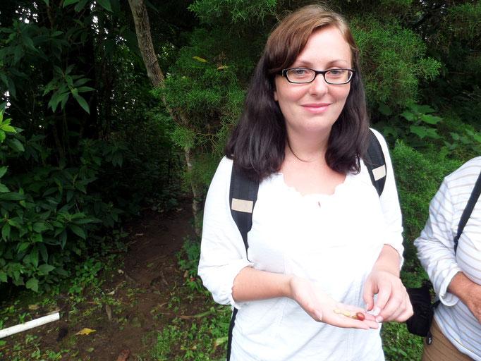 Boquete Im Panamesischen Hochland Mit Kind Und Hund Im
