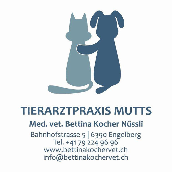https://www.bettinakochervet.ch/