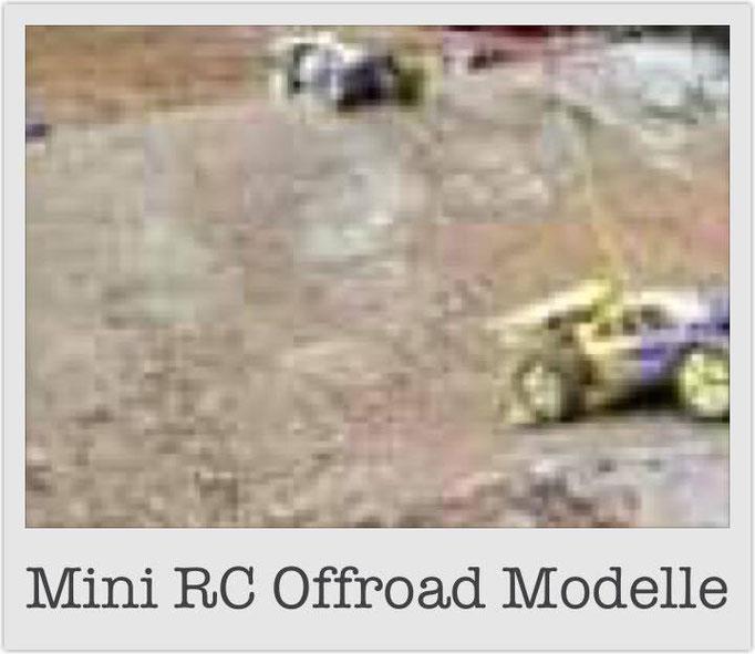 Mini RC Offroad Modelle