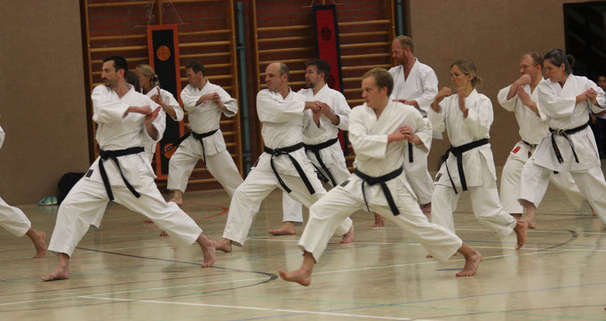 Thoralf Altenburg Lehrgang beim Shotokan Karate Stade e.V.