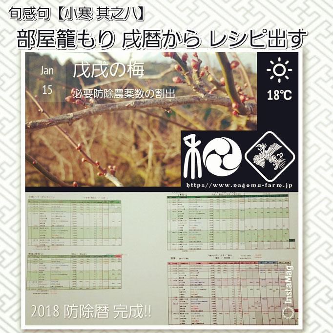 旬感句 【小寒 其之八】 『部屋籠もり 戌暦から レシピ出す』