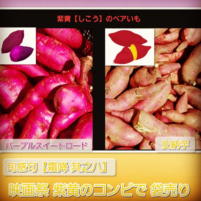 旬感句【霜降 其之八】 『映画祭 紫黄のコンビで 袋売り』