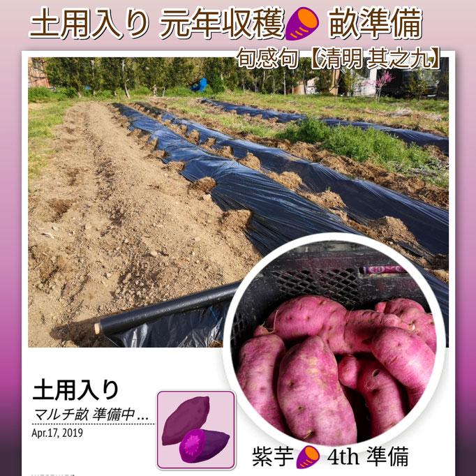 旬感句 【清明 其之九】 『土用入り 元年収穫 畝作り』