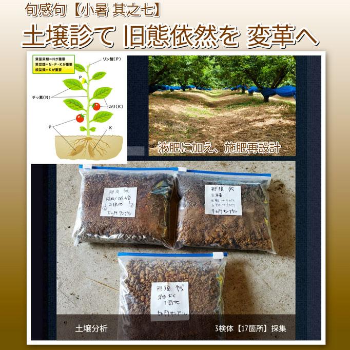 旬感句 【小暑 其之七】 『土壌診て 旧態依然を 変革へ』