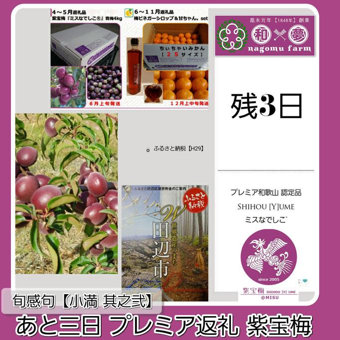 旬感句 【小満 其之弐】 『あと三日 プレミア返礼 紫宝梅』