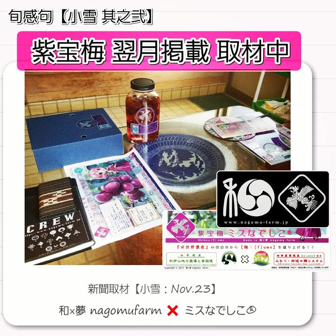 旬感句 【小雪 其之弐】 『紫宝梅 翌月掲載 取材中』