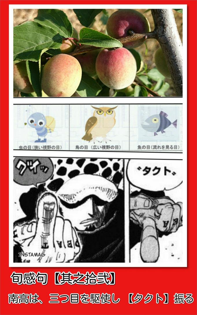 旬感句【皐月 其之拾弐】 南高は、三つ目を駆使し 『タクト』振る