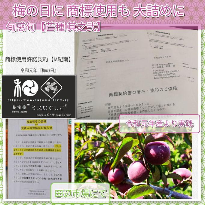 旬感句 【芒種 其之弐】 『梅の日に 商標使用も 大詰めに』