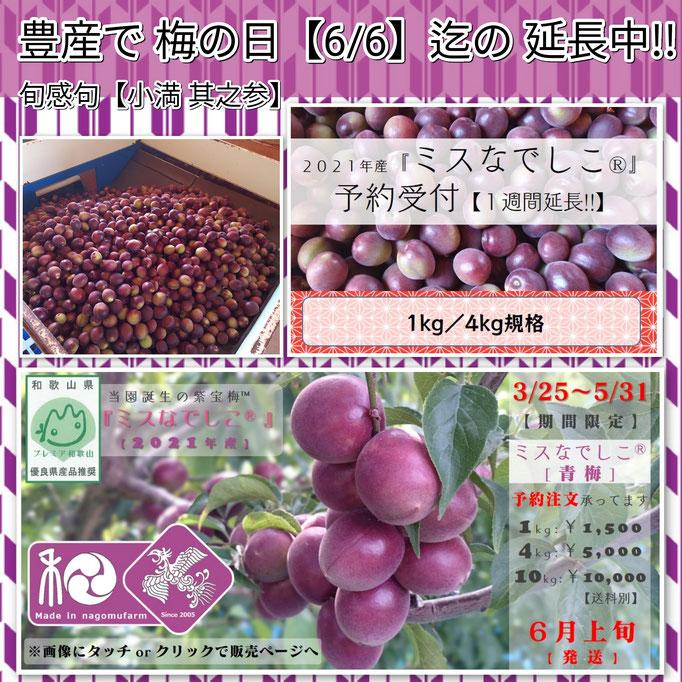 旬感句 【小満 其之参】 『豊産で 梅の日【6/6】迄の 延長中!!』