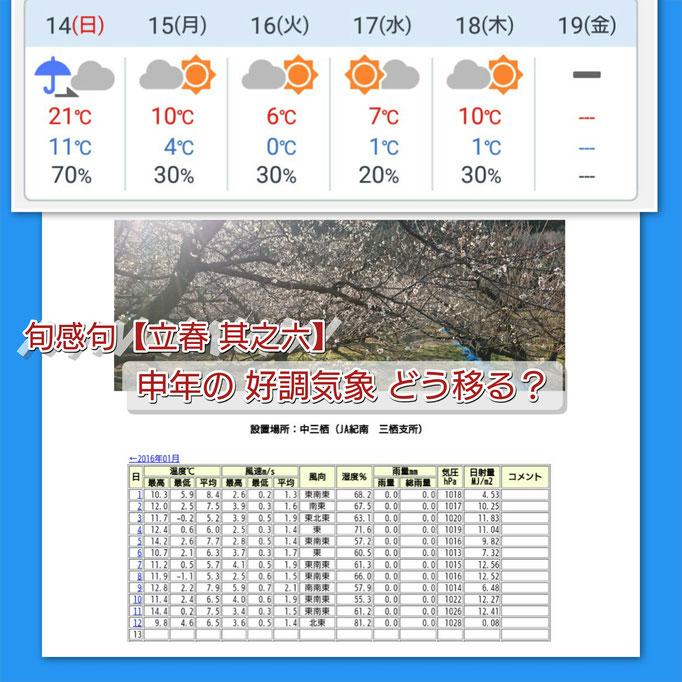 旬感句【立春 其之六】 申年の 好調気象 どう移る?