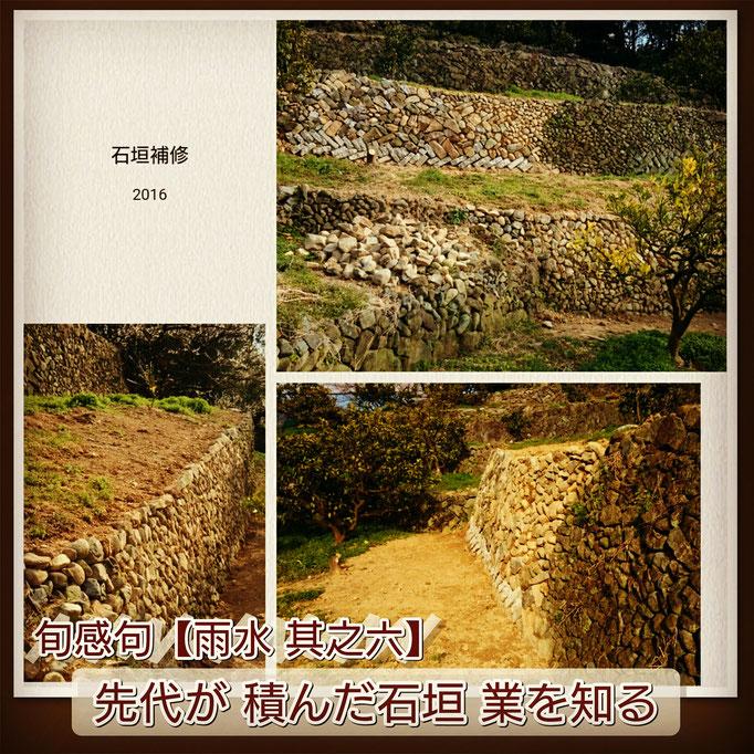 旬感句【雨水 其之六】 『先代の 積んだ石垣 業を知る』