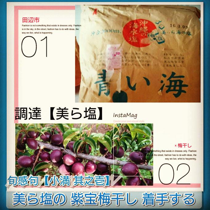 旬感句【小満 其之壱】 『美ら塩の 紫宝梅干し 着手する』