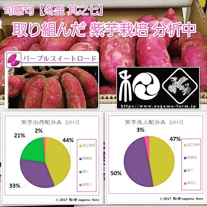旬感句 【冬至 其之七】 『取り組んだ 紫芋栽培 分析中』
