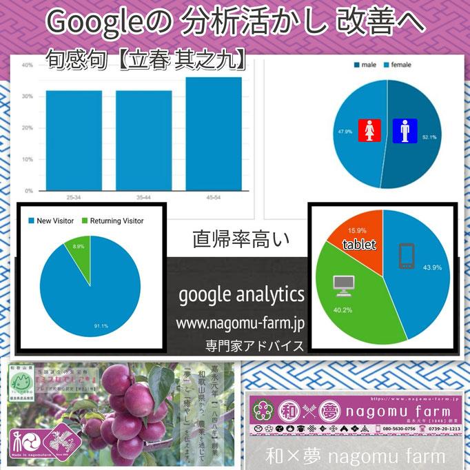 旬感句 【立春 其之九】 『googleの 分析活かし 改善へ』