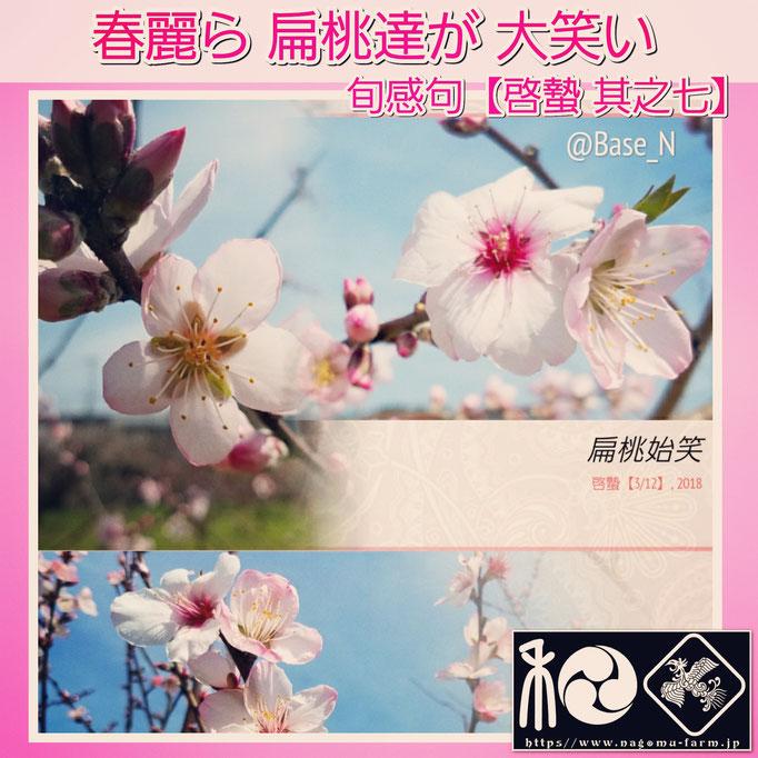 旬感句 【啓蟄 其之七】 『春麗ら 扁桃達が 大笑い』