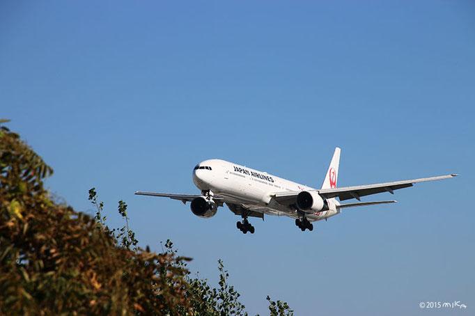 『JAL FLY to 2020 特別塗装機』着陸前(2015年10月18日14時頃/伊丹空港)