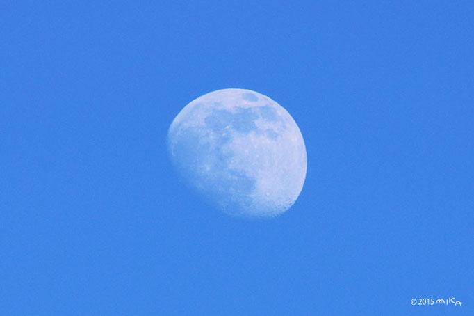 昼の月(2015年6月28日)