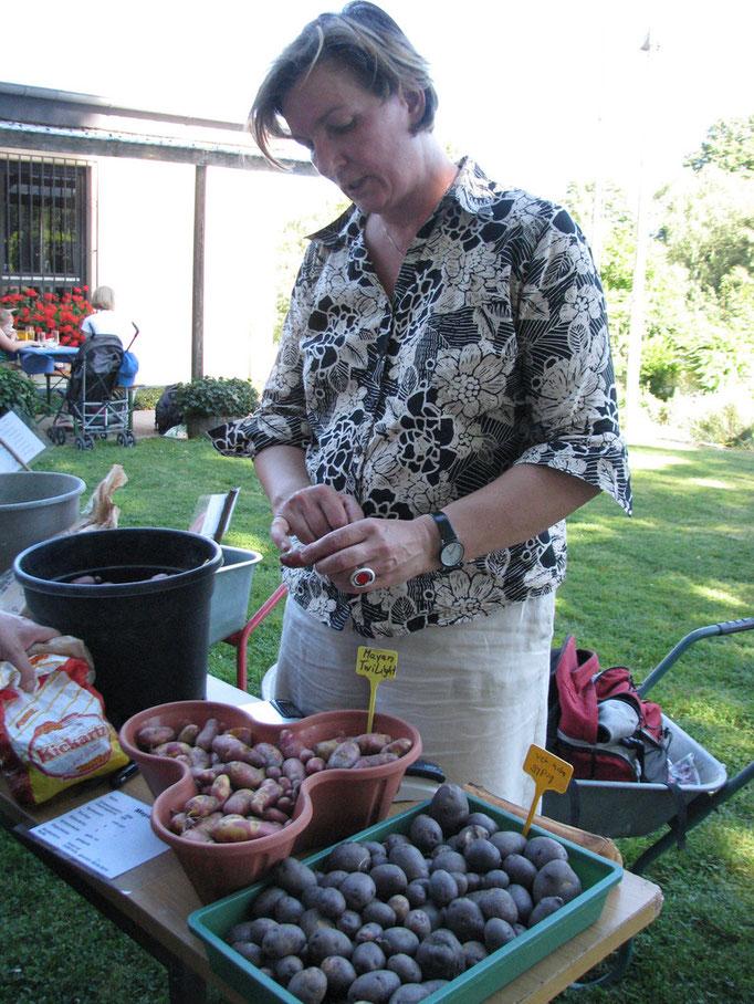 "Am Verkaufsstand: Unsere ""Kartoffel-Expertin"" Carola Foto: Dr. Vicky Temperton"