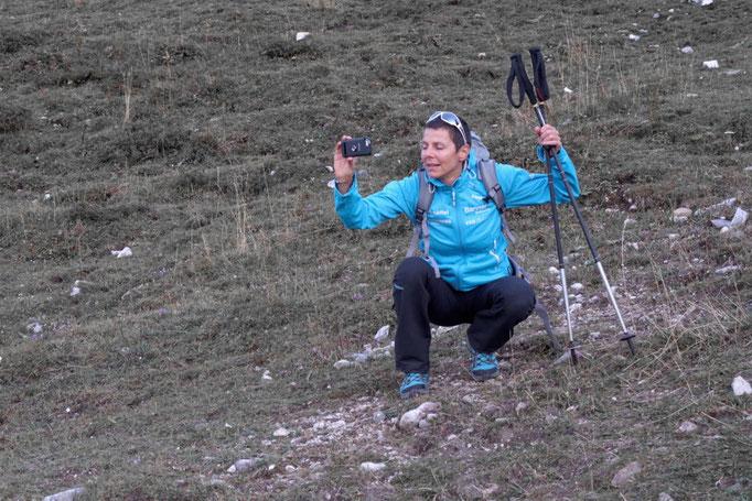 24 Stunden Wanderung für Nepal, Gerlinde Kaltenbrunner als Schrittmacherin mit dabei