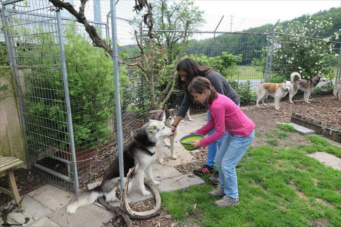 Annina serviert ihrer Borea noch den Fleischtopf
