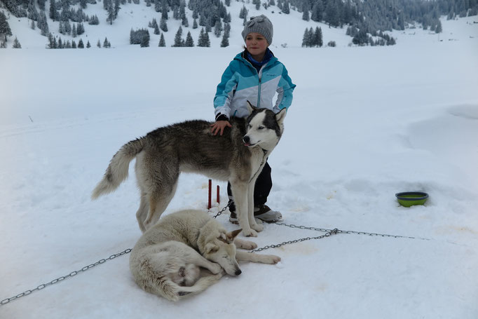 Mit Yukon und Snow
