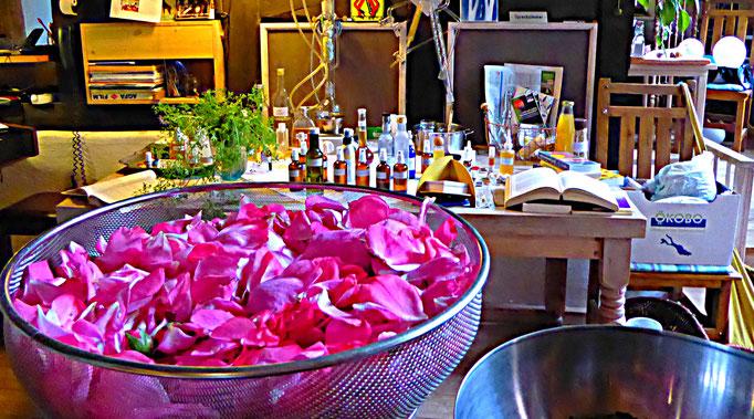 Rosenblüten - fertig für die Destille