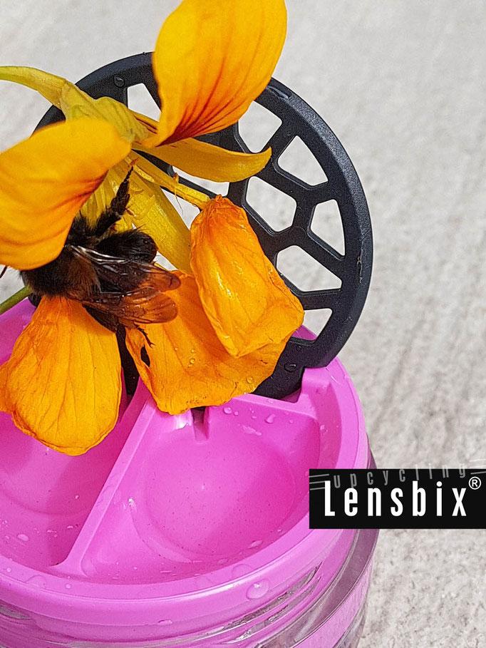 Lensbix upcycling - Süßes entdeck!  /  Kontaktlinsenbehälter / Kontaktlinsenbox / Box für Kontaktlinsenaufbewahrung  / Kontaktlinsendose / Kontaktlinsen-behaelter