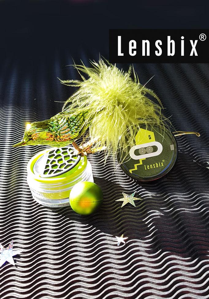 Kiwi xmas Arangement Lensbix Kontaktlinsenbehälter Aktuell Weihnachten