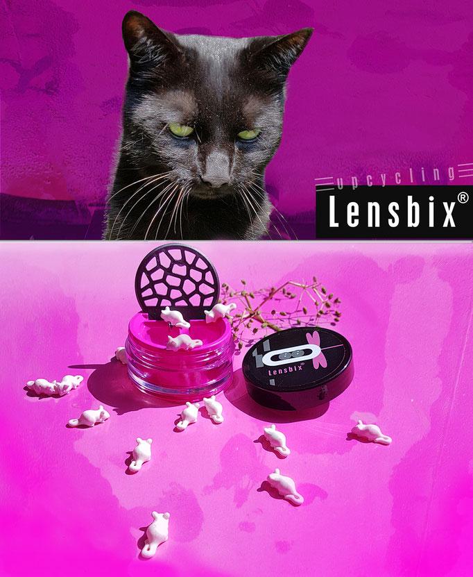 Lensbix upcycling - Nein - Mimi läßt sich nicht täuschen, Mimi liebt Pink  / Kontaktlinsenbehälter / Kontaktlinsenbox / Box für Kontaktlinsenaufbewahrung  / Kontaktlinsendose / #Kontaktlinsen-behaelter