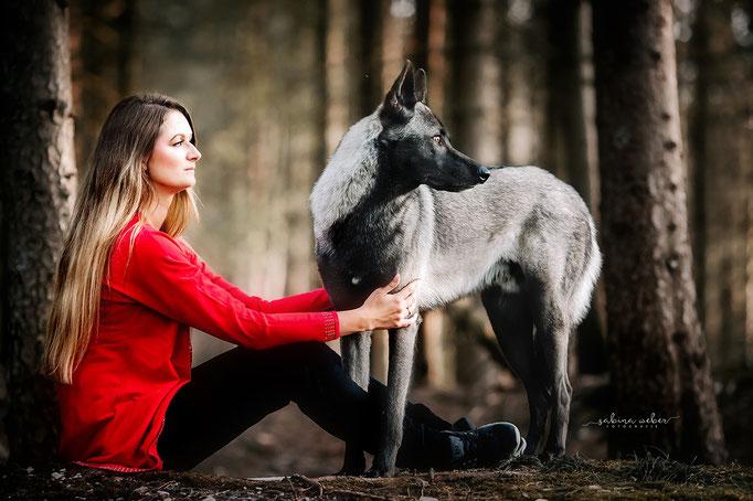 Wolfshund Seelentier Seelenhund Hundefreund