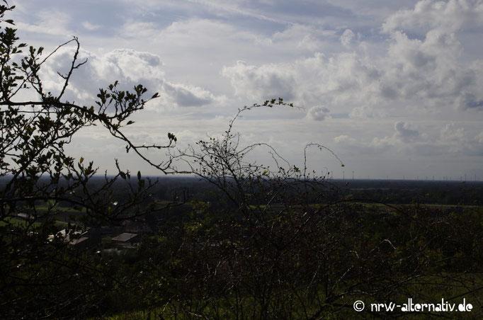 Toller Ausblick auf dem Tecklenburger Bergpfad