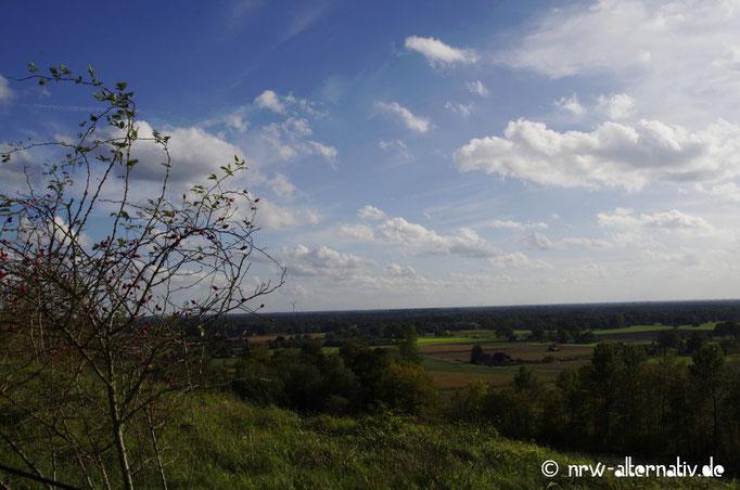 Die Landschaft ist schön am Tecklenburger Bergpfad.