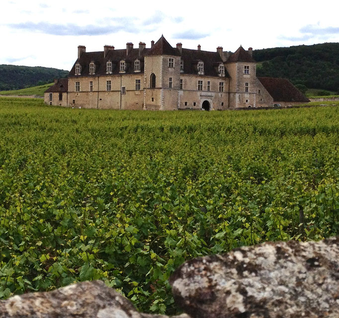 Chateau Clos de Vougeot in Burgundy