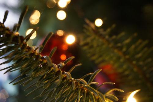 Weihnachtliche Stimmungslichter an Tannenzweigen.