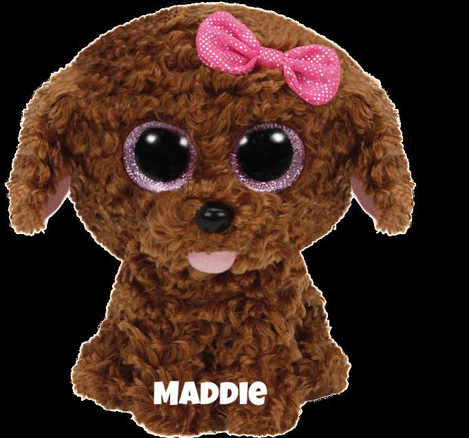 """Maddie hat am 28. März Geburtstag. """"Everyone thinks that I am so cute / I prefer a dog treat instead of fruit!"""""""