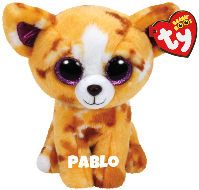 "Pablo is op 21 juni jarig. ""If you give me some love, I'll do a trick / I like to play fetch, just toss me a stick!"""