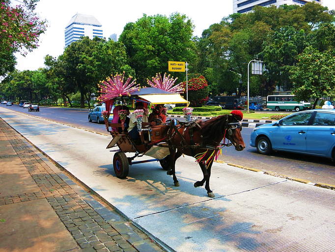 Traditionelle indonesische Pferdekutsche