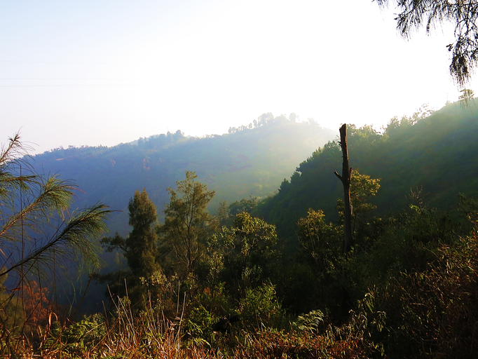Bromo-Tengger-Semeru Nationalpark