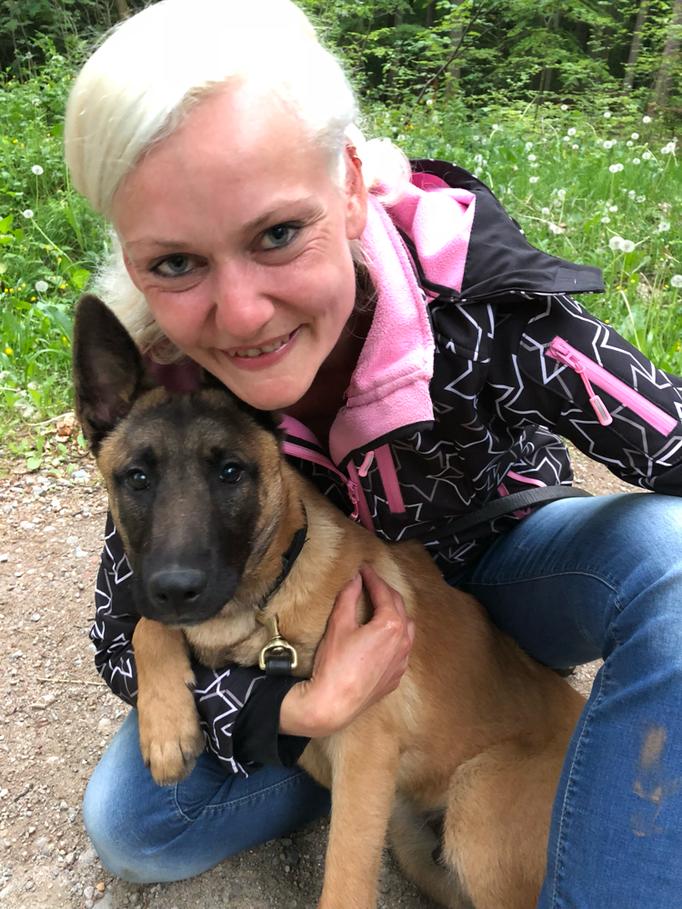 Belgischer Schäferhund Welpe Mischka