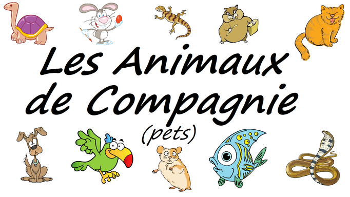 French Pets Vocabulary Les animaux de compagnie