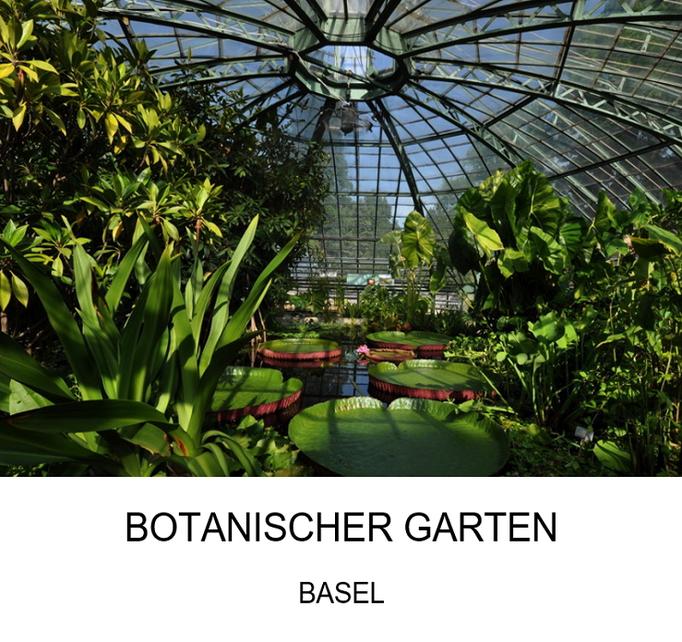Ausflugsziel: Botanischer Garten