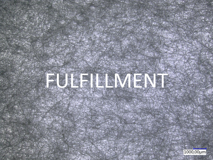 Fulfillment: We continuously develop our skills to achieve above-average results. With our actions we strive for satisfaction, joy and personal fulfilment.