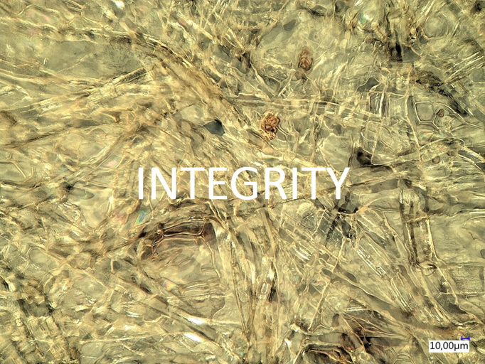 Integrity: We always act with integrity, show courage and have confidence in our own abilities